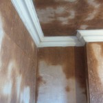 84 balgreen road after plastering and conice large scotch  (1)