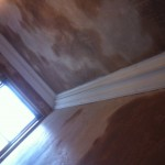 84 balgreen road after plastering and conice large scotch  (3)